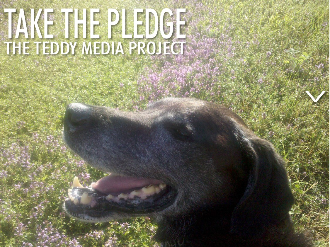 Take The Pledge: Media Leaders Band Together To Create Cultural Change